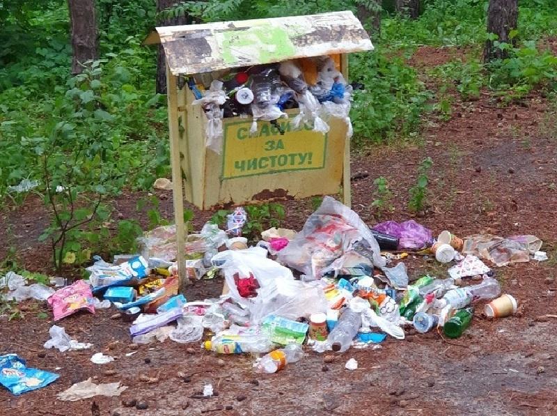 Прогулка воронежца по лесу превратилась в мусорное разочарование