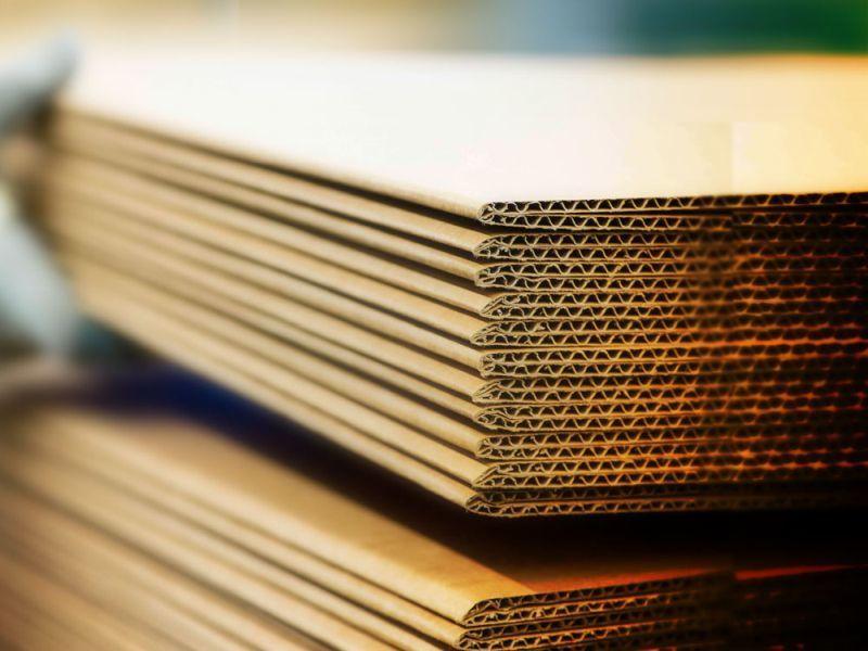 Картонное производство под Воронежем обошлось в 1,5 млрд рублей