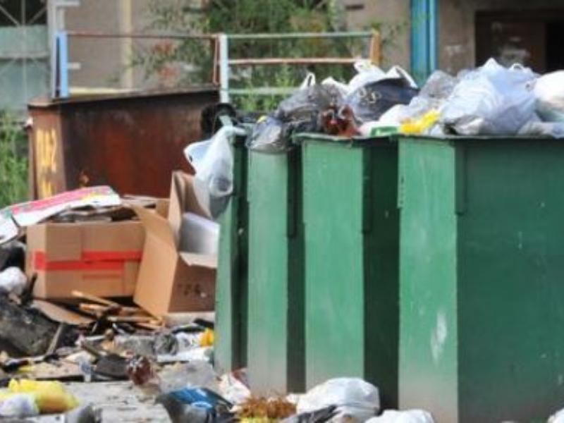Воронежцы могут сообщить о мусорных завалах на «горячую линию»