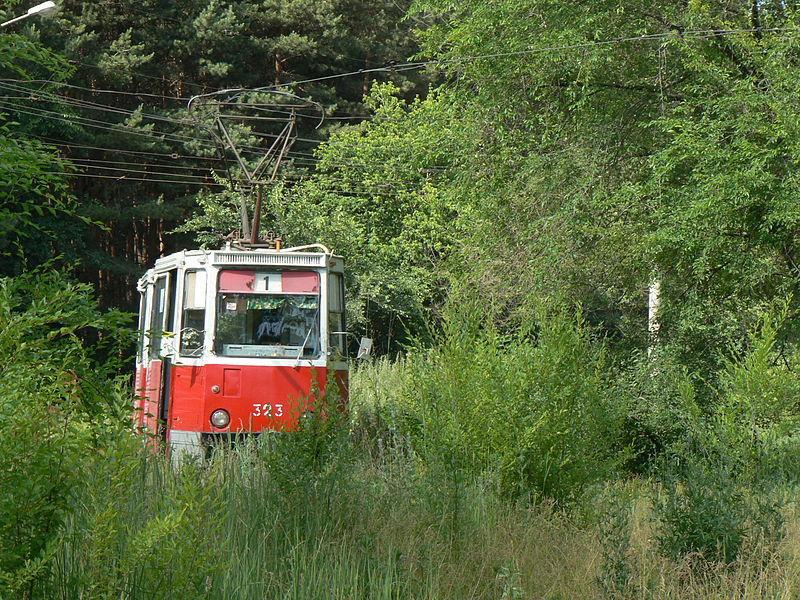 Воронежца, ностальгирующего по трамваям, послали в деревню