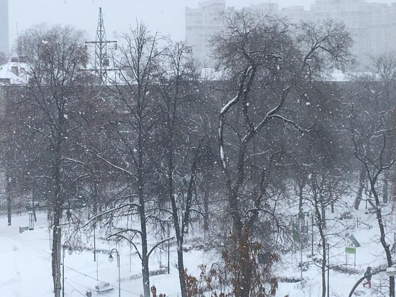 Снежная сказка безжалостно накрыла Воронеж