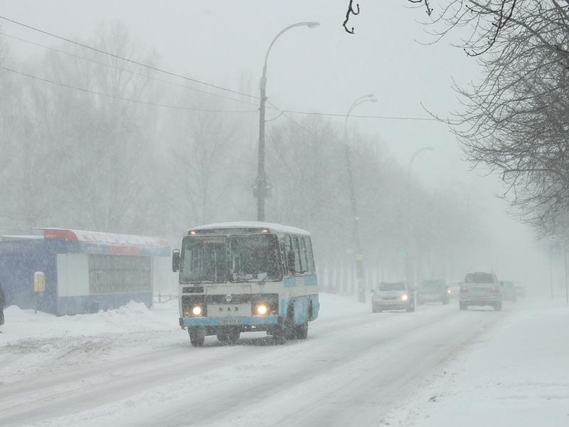 Полицейские устроили слежку за маршрутками в Воронеже