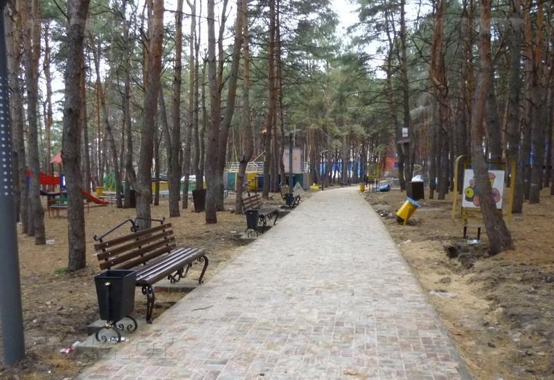 Воронежцы обсудят, каким они хотят видеть обновленный парк «Дельфин»