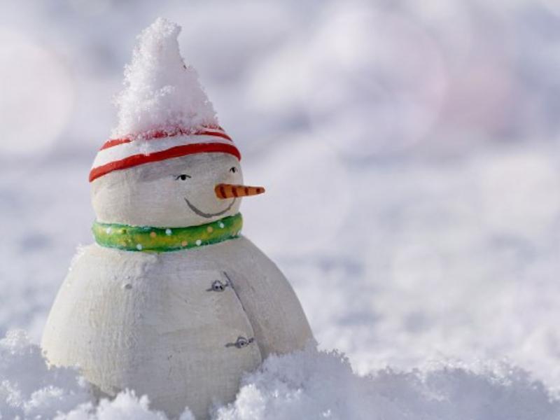 Синоптики рассказали, вернется ли в Воронеж зима
