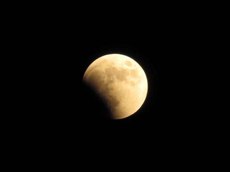 Стало известно, когда воронежцы вновь увидят лунное затмение