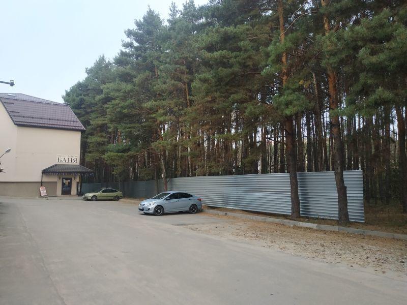 Воронежцы сообщили о вырубках деревьев в Северном лесу