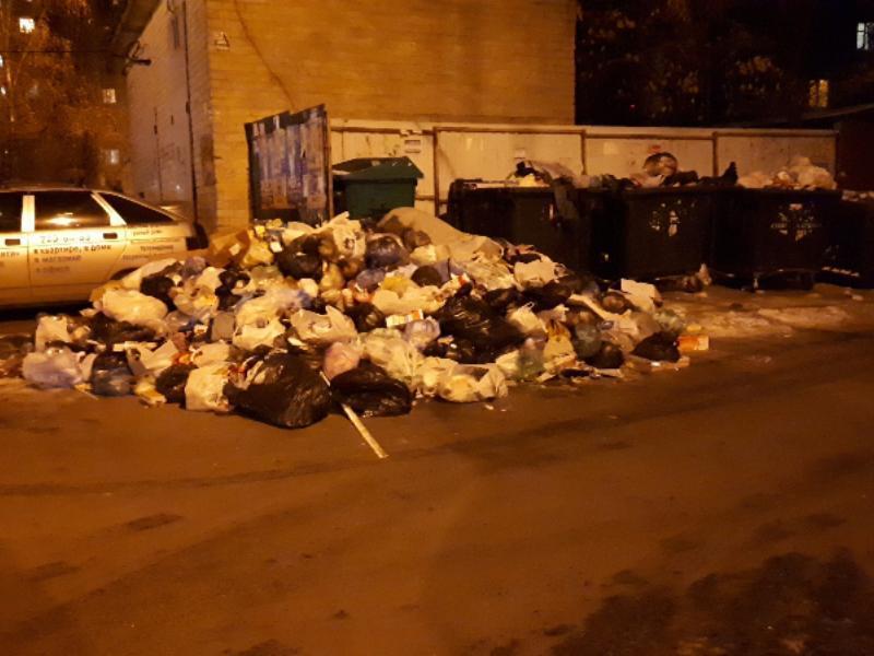 Страстную любовь чиновников к мусору увидели в Воронеже