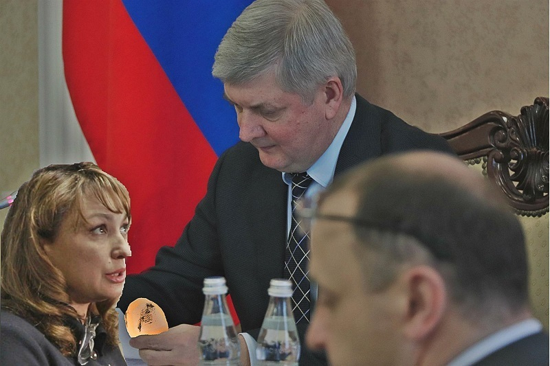 Губернатор Гусев поручил Абричкиной взяться за яйца