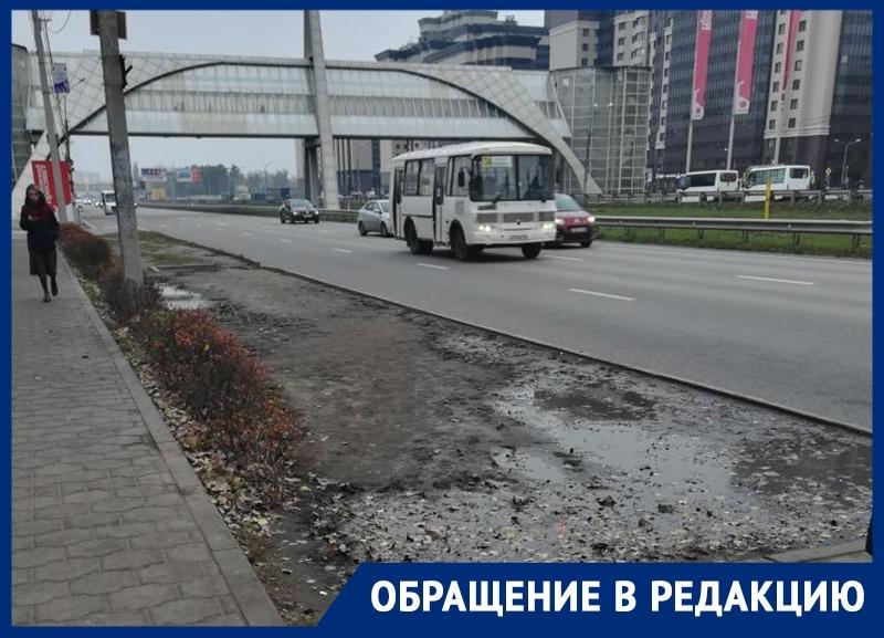 Лень воронежских маршрутчиков уничтожила газон на остановке