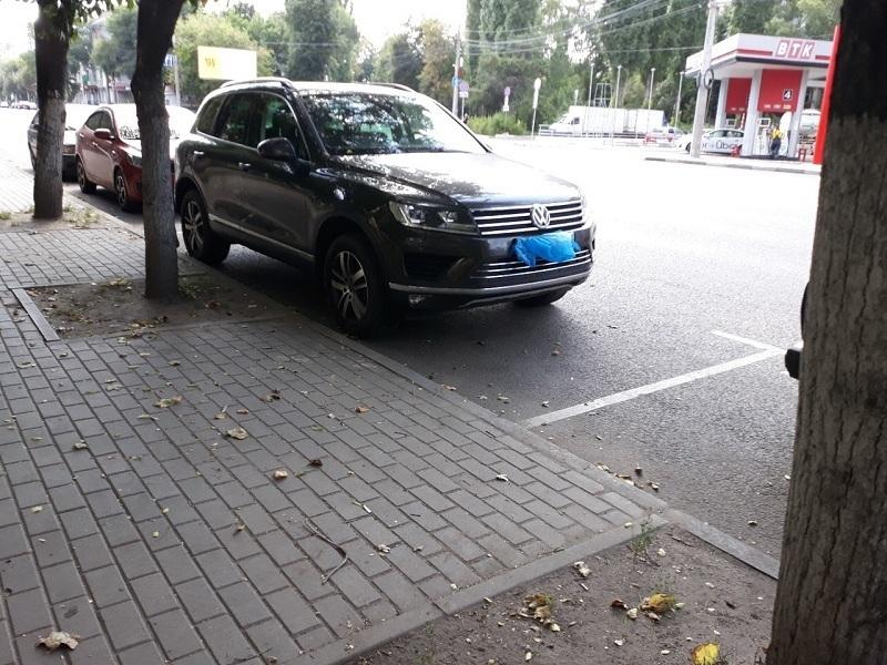 Мусорный уход от штрафов сняли на фото в Воронеже