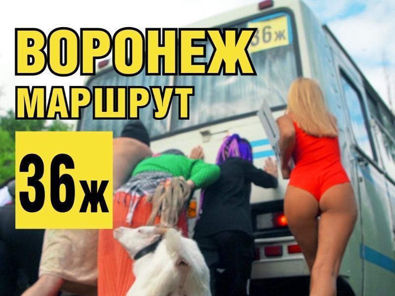 Стереотипы о маршрутках искрометно высмеяли в Воронеже