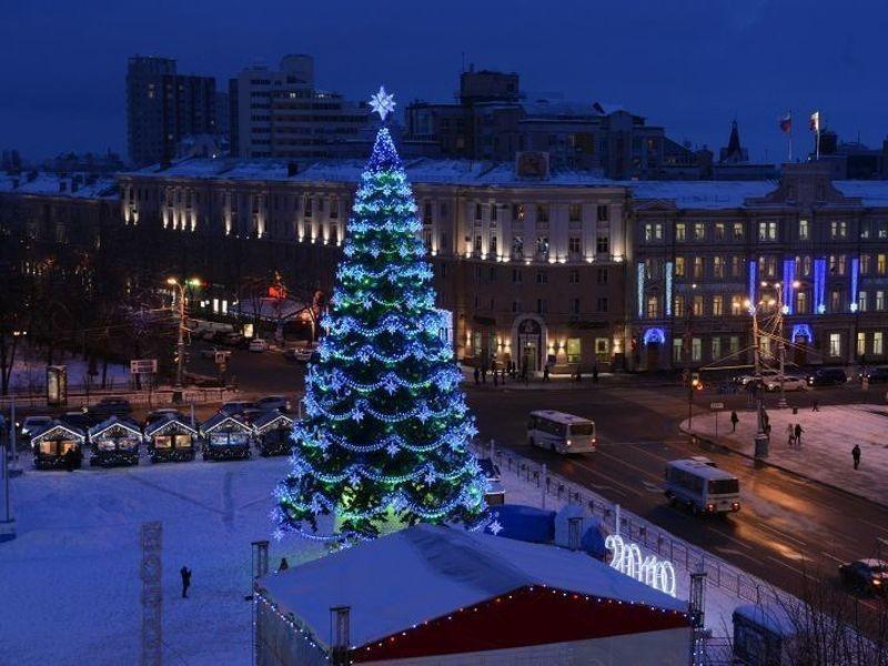 В конкурсе на установку новогодней елки в Воронеже УФАС не нашло нарушений