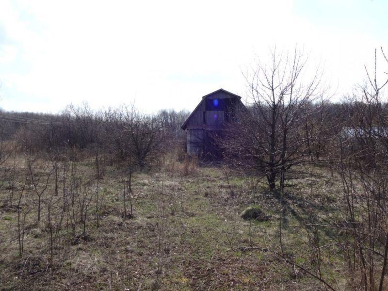 В Воронеже обнаружили мошеннический захват 8 тыс «квадратов» земли