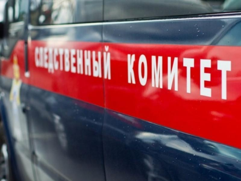 Труп подруги с разбитой головой нашла дома жительница Воронежской области