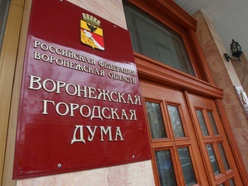 Рейтинг эффективности работы депутатов Воронежской городской Думы