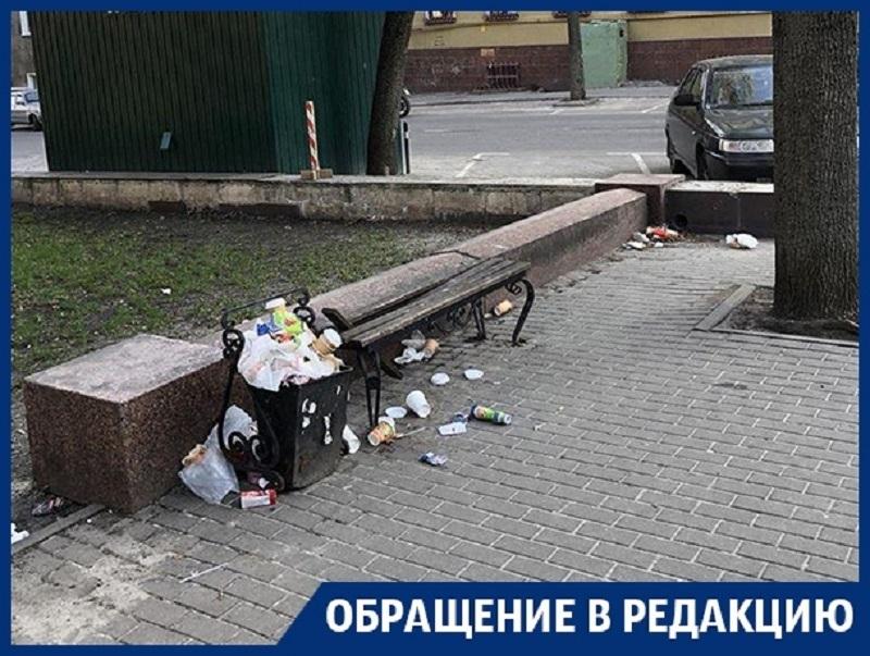 Превращение Петровского сквера в помойку возмутило воронежцев
