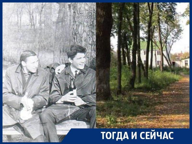 Какова ценность Бринкманского сада, по которому не могут определится власти Воронежа