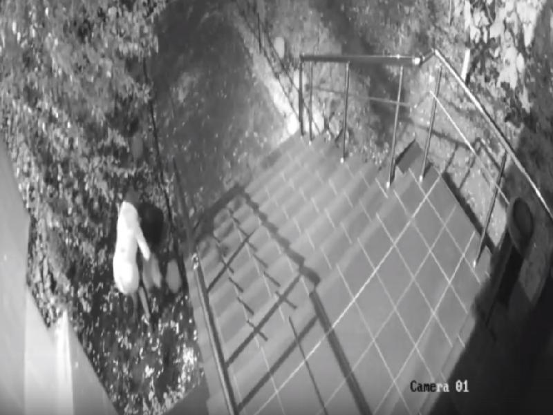 Гадкий поступок женщины запечатлела скрытая камера в Воронеже