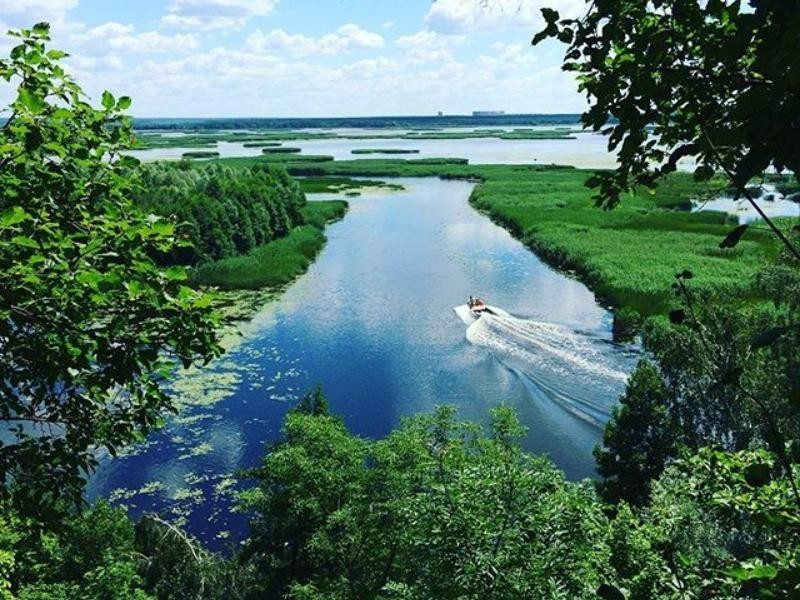 Протаранивший лодку водитель гидроцикла под Воронежем сдался силовикам