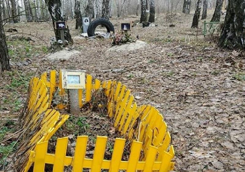 На кладбище домашних животных наткнулись велосипедисты в Воронеже