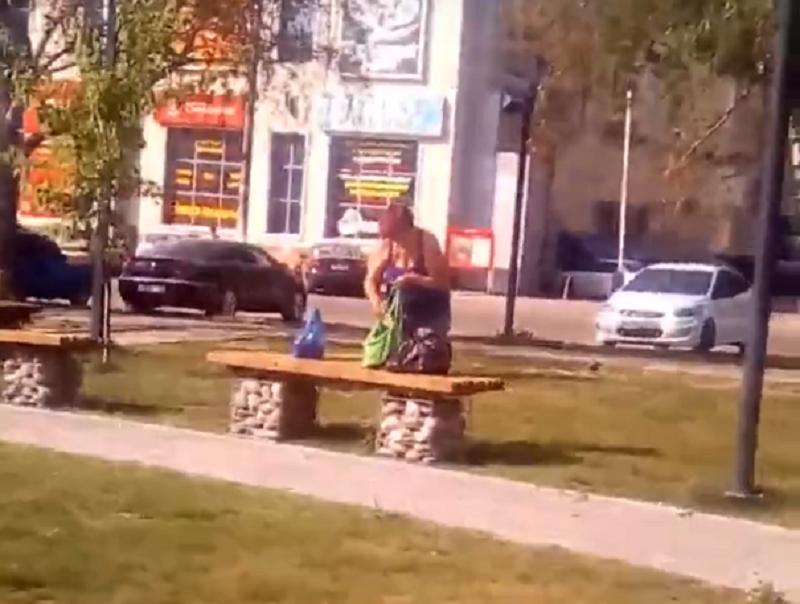 Циничное расхитительство парка сняли на видео в Воронежской области