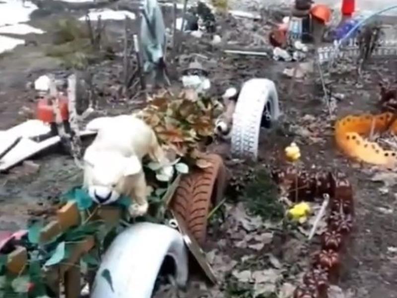 Жутковатую инсталляцию из гниющих игрушек нашли в Воронеже