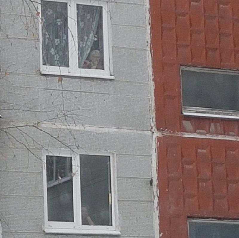 Воронежцы поглумились над старушками, ждущими, пока оттают лавочки