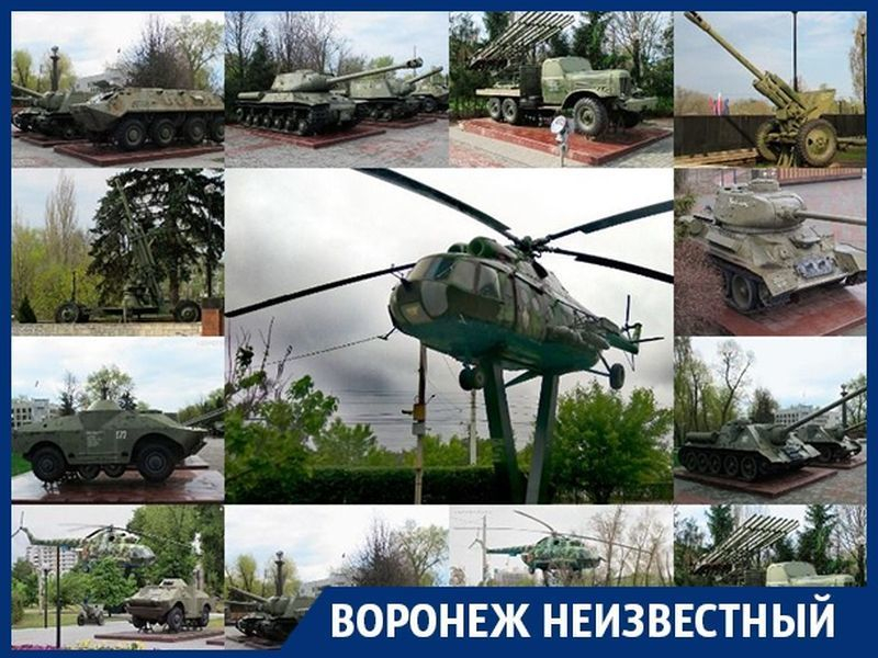 Какая гордость России расположена в воронежском левобережье