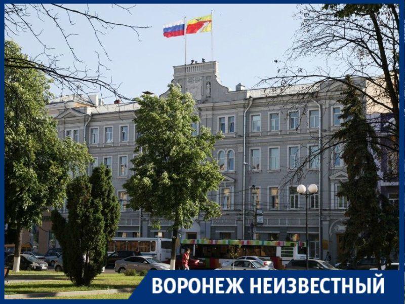 Какие были символы у Воронежа за его 432-летнюю историю