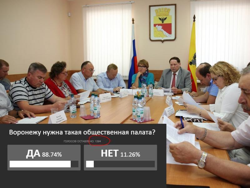 Аномальное голосование прошло в поддержку ОП в Воронеже