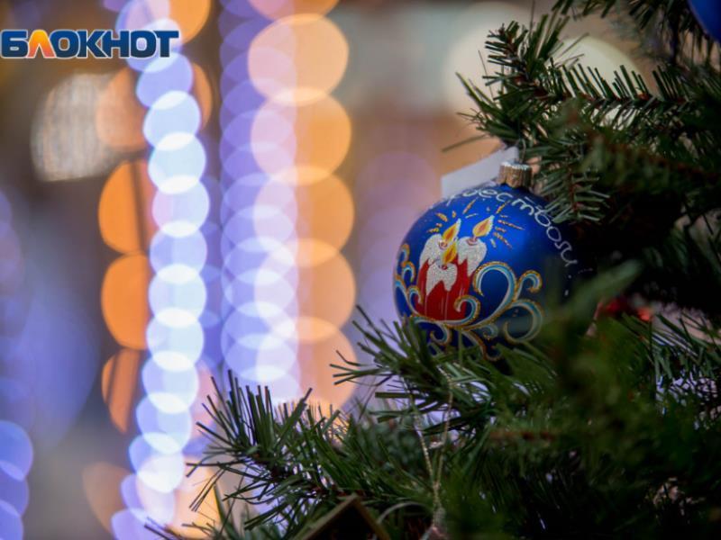Где и когда будут продавать елки в Воронеже в 2019 году