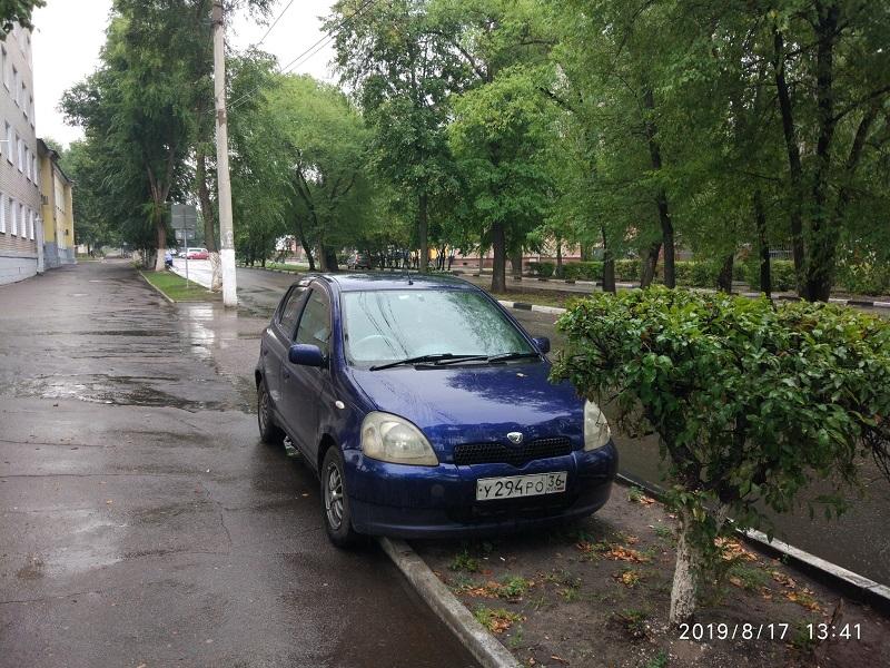 Клумбу превратили в бесплатную парковку в Воронеже