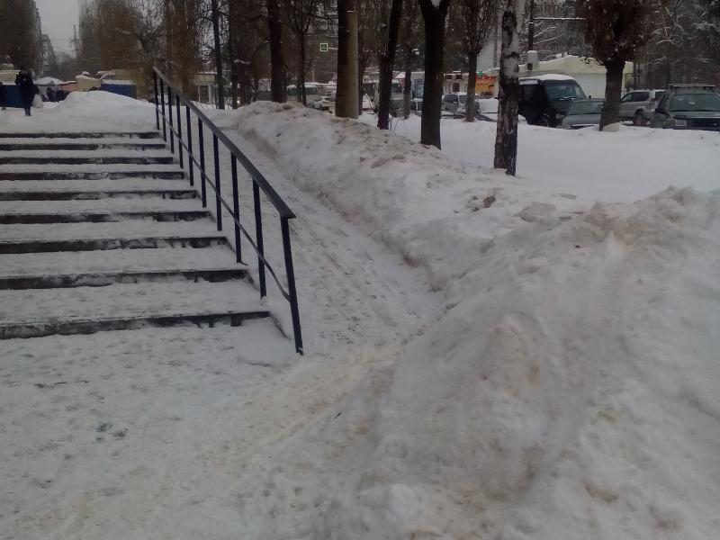 Дискриминацию мам и колясочников устроили коммунальщики в Воронеже