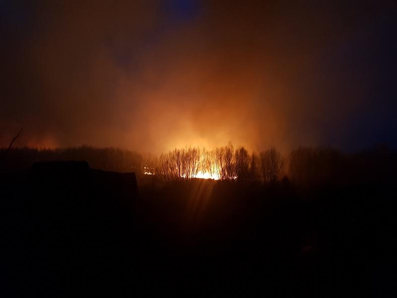 Крупный пожар в пойме воронежской реки попал на снимки