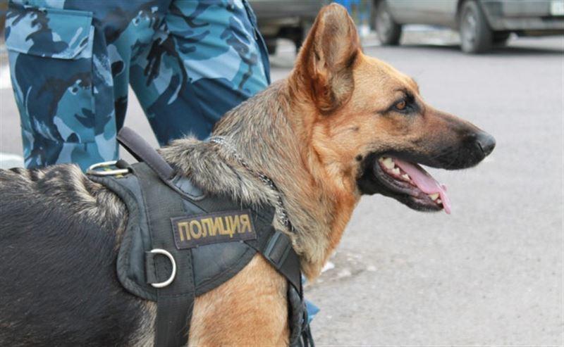 ВВоронеже из-за подозрительного пакета оцепили Дом офицеров