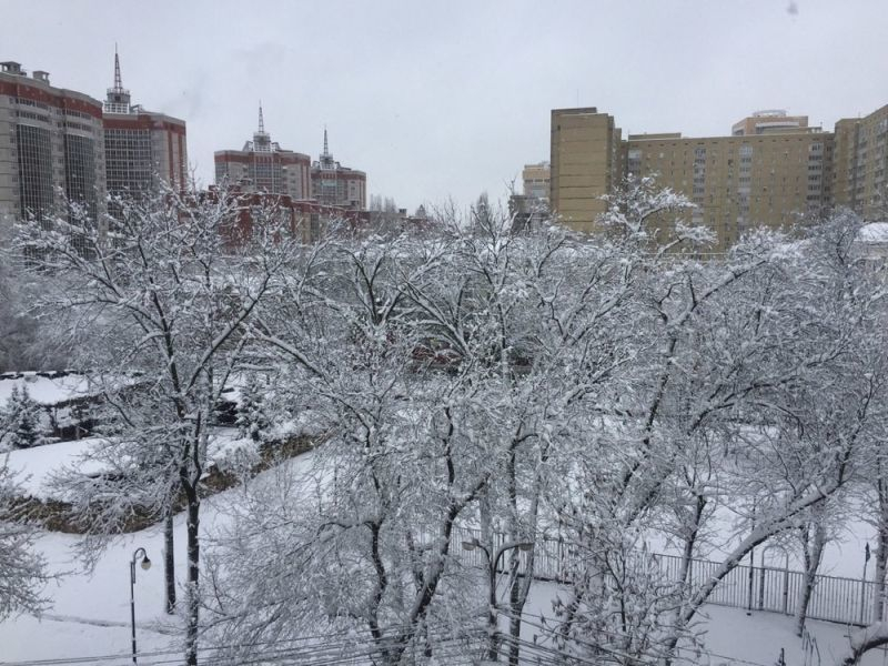 О мощнейшем снегопаде синоптики предупредили воронежцев