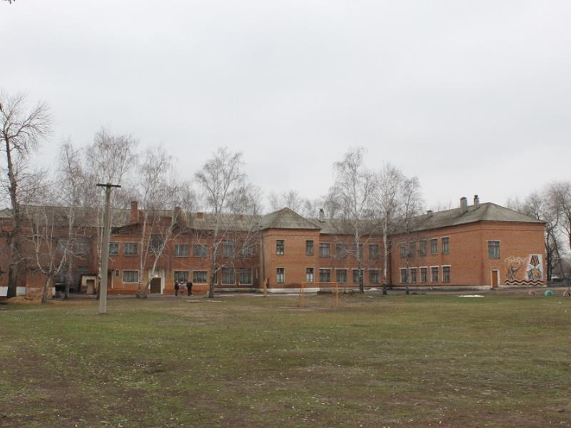 Жалкое состояние 83-летней школы показали на фото в Воронежской области