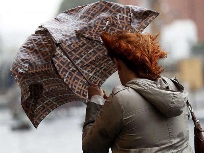 Спасатели предупредили воронежцев об опасном усилении ветра