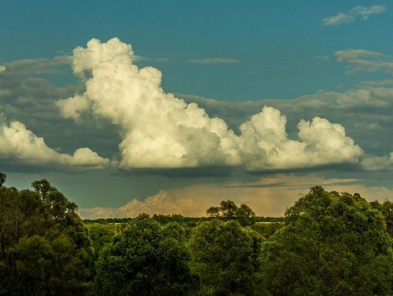 В Воронежской области громадные облака сравнили с пуделем и слоном
