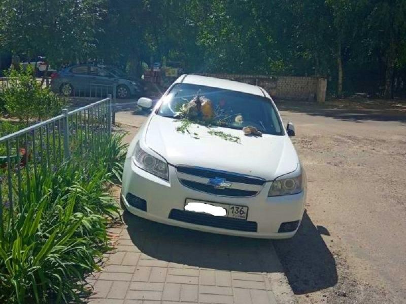 Машину типичного короля парковки забросали мусором в Воронеже