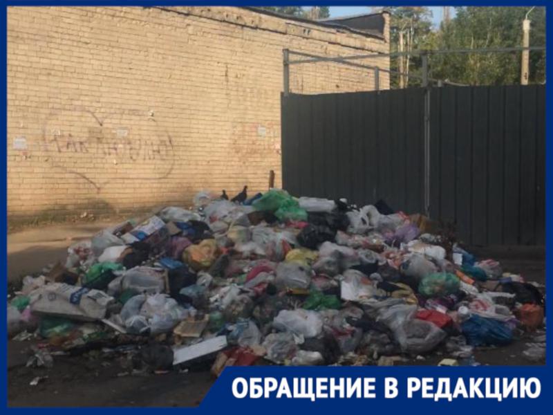 Протест воронежцев против закрытой мусорки обернулся грязным бедствием во дворе
