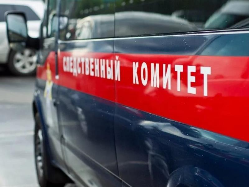 Тело 17-летней девушки нашли на улице в Воронежской области