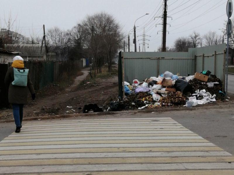 На воронежской дороге нашли опасную для жизни мусорку