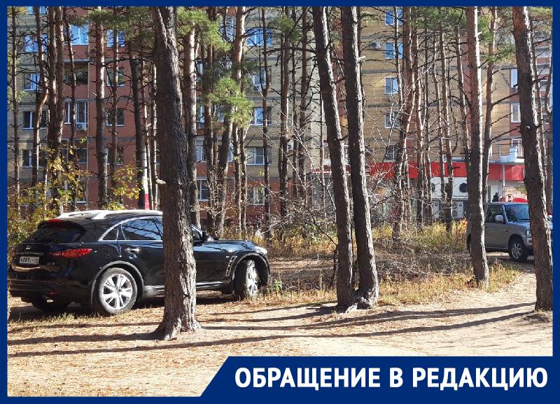 Автомобилисты превратили воронежский парк в парковку
