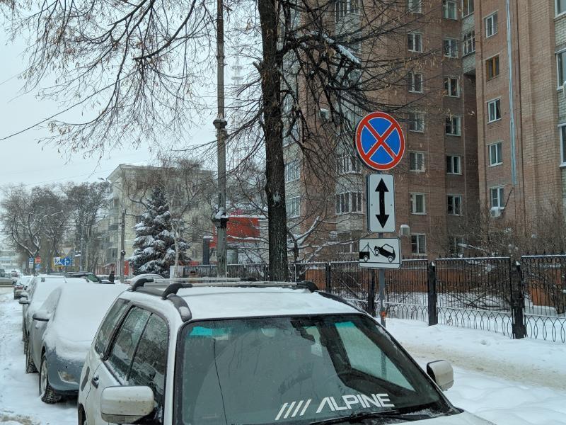 Воронежцам показали рискованный бойкот платных парковок