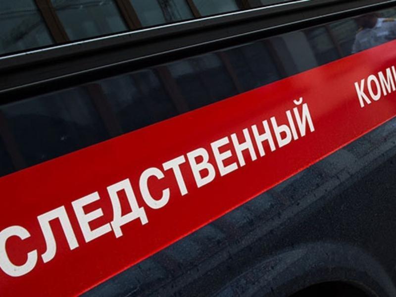 Трагедия с гибелью 7-летней девочки произошла в Воронежской области