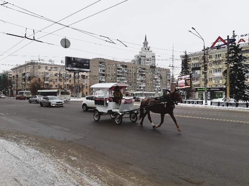 Сказочная карета рассекает по Воронежу без пробок   452