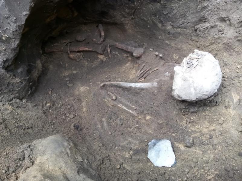 Останки человека нашли спустя 3 тыс лет в Воронежской области