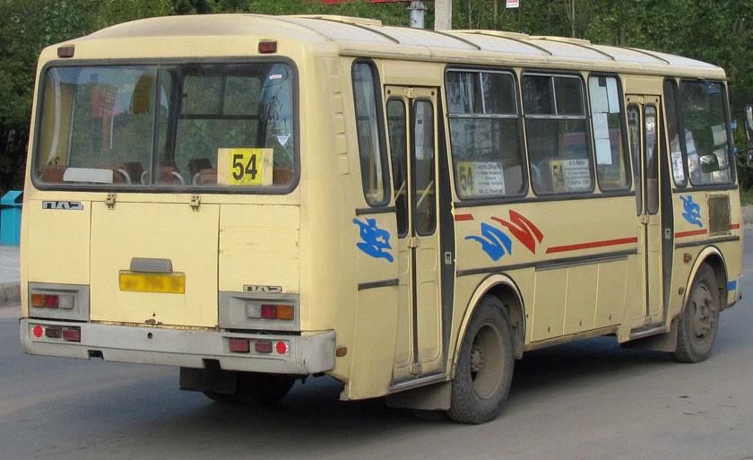 Жительница Воронежа получит 80 тыс. руб. западение в54 маршрутке