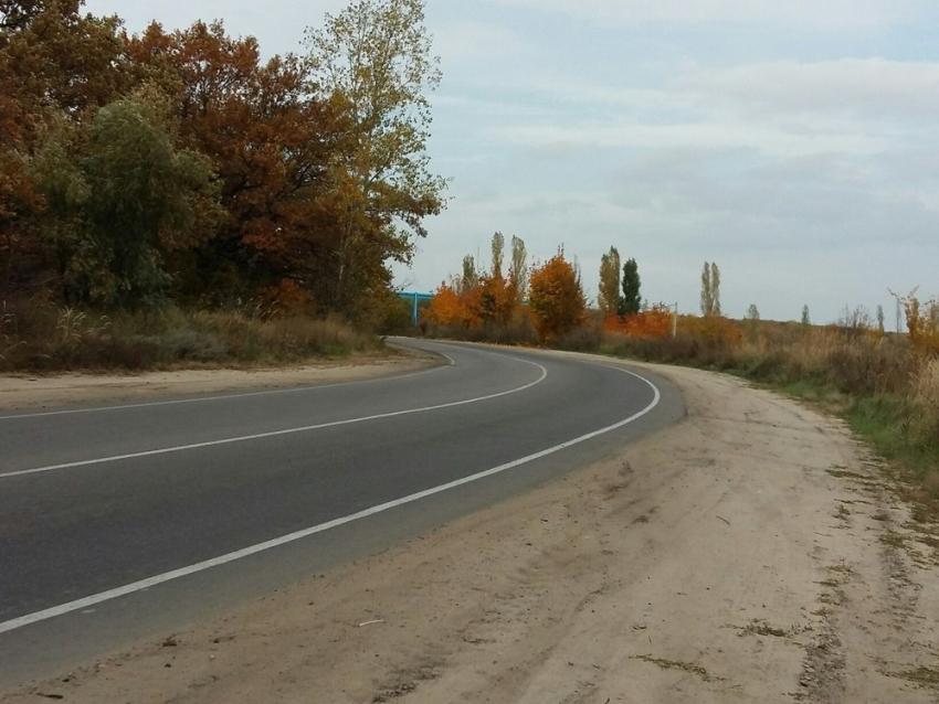 ВВоронежской области учительница насмерть сбила 9-летнего школьника собственной школы